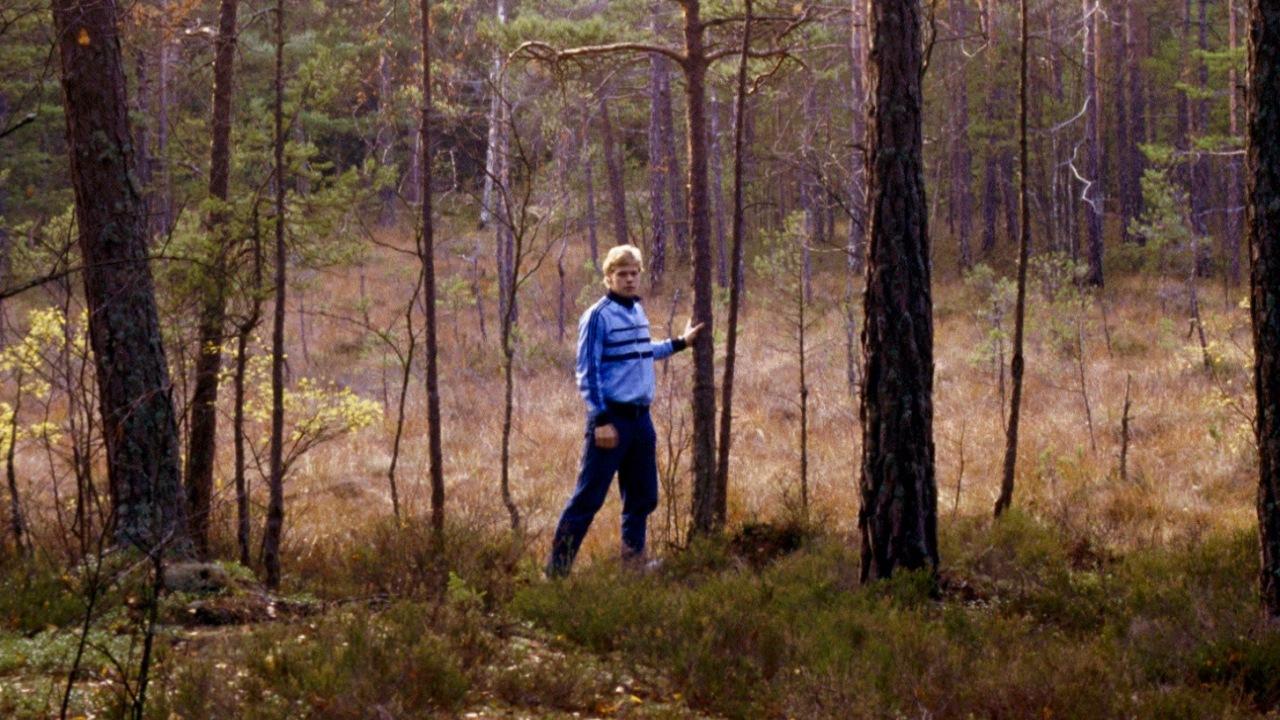 Skogen3